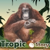 Dreamzer - Tropicstory player